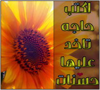 1237831_10151642096981226_2124532401_n