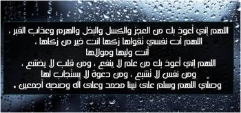 1239375_10151641882596226_1065812959_n