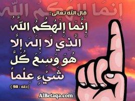 25370_377047531225_6058792_n