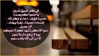 549589_10151641436151226_178095261_n